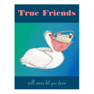 Friendship -- Pelican and Pug Postcard