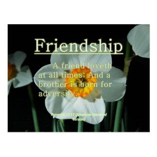Friendship Proverbs 17:17 Postcard