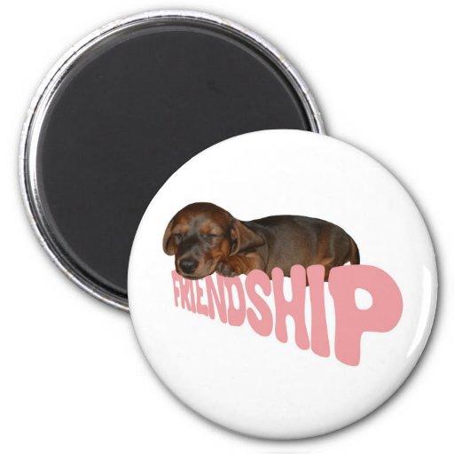 Friendship puppy / dog is man's best friend, pink fridge magnets