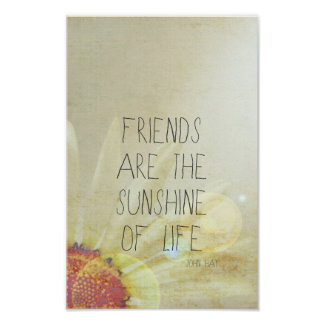 Friendship & Sunshine Poster