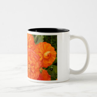 Friendship's Garden. Two-Tone Coffee Mug