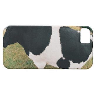 Friesian牛の側面図 iPhone 5 Cases