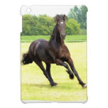 friesian-12.jpg iPad mini covers