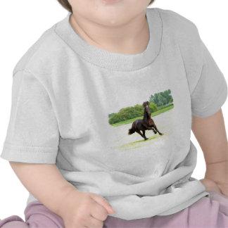 friesian-12.jpg tshirts