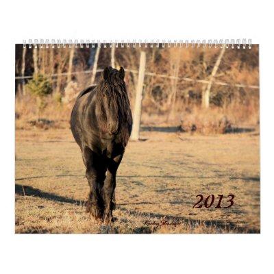 Friesian and Horse 2013 Wall Calendar