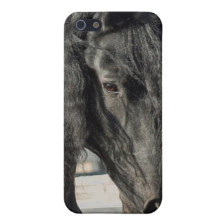 Friesian Beauty iPhone 5 Cover