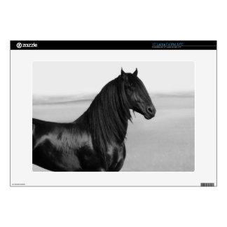 Friesian black stallion horse decal for laptop