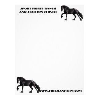 Friesian Colt Personalized Letterhead