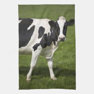 Friesian cow kitchen towel