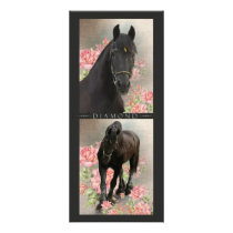 Friesian DIAMOND - Rack / Postcard Rack Card