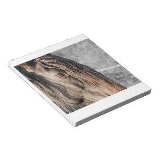Friesian Eye Memo Notepads