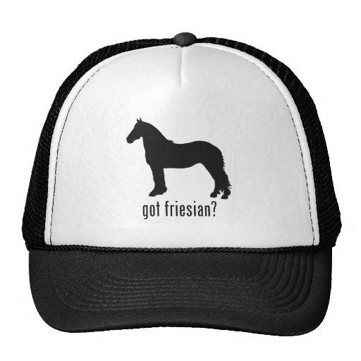 Friesian Mesh Hat