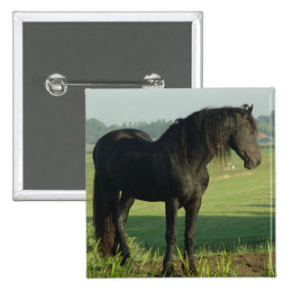 Friesian Horse 2 Inch Square Button