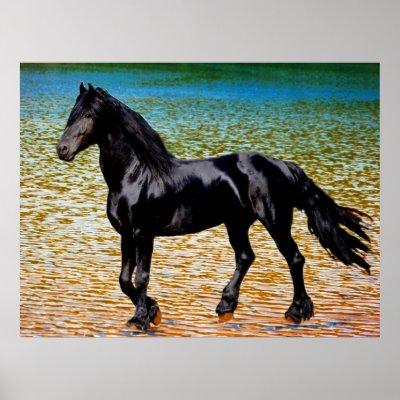 Friesian horse at the lake poster