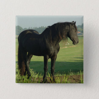 Friesian Horse Button