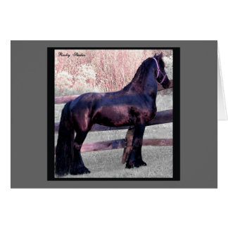 Friesian Horse Card