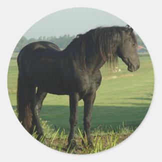 Friesian Horse Classic Round Sticker