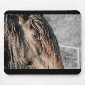 Friesian Horse Eye Mouse Pad