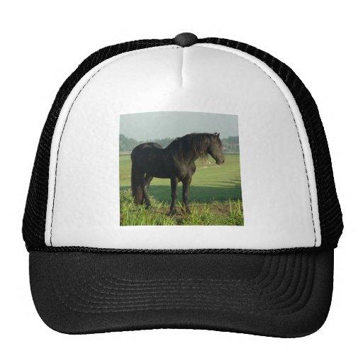 Friesian Horse Trucker Hats