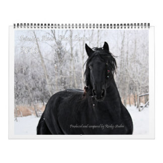 Friesian Horse Huge Photo Calendar