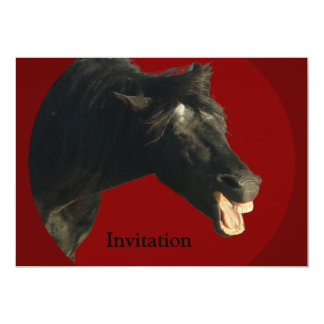 Friesian Horse in Red circle Card