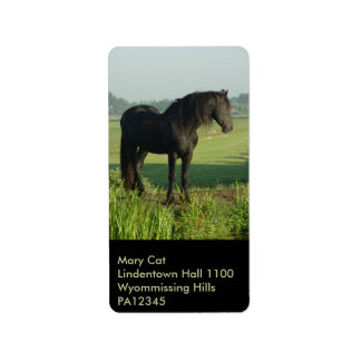 Friesian Horse Label