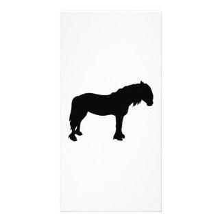 Friesian horse photo card