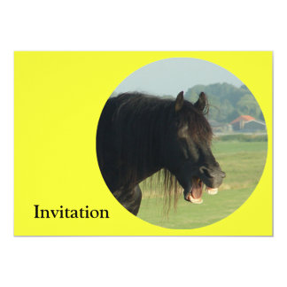 Friesian Horse-portrait yawning in circle Card
