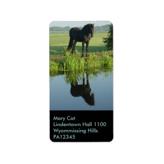 Friesian Horse Reflection in water Label