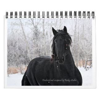 Friesian Horse small photo Calendar