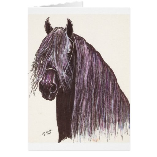 Friesian Horse Study Cards