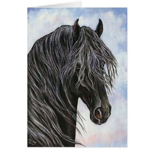 Friesian Horse Study Greeting Cards