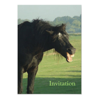 Friesian Horse Yawning Card