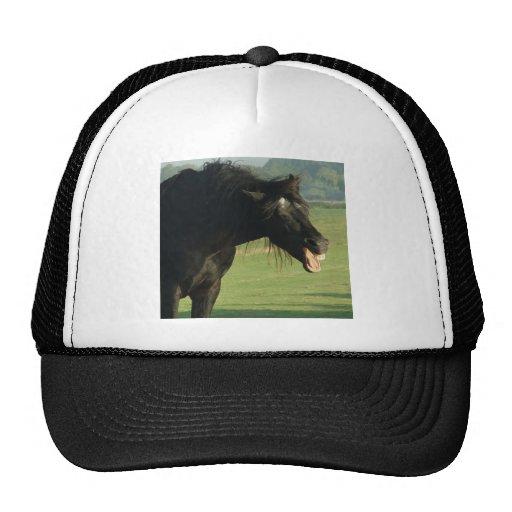 Friesian Horse Yawning Trucker Hats