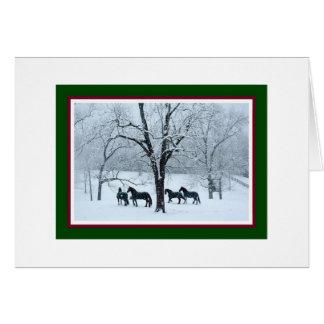 Friesian Horses in Snow Christmas Card