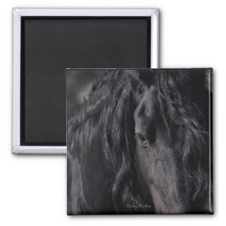 Friesian Image 2 Inch Square Magnet