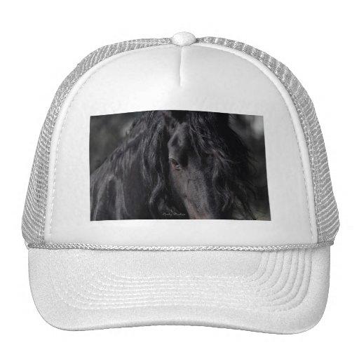 Friesian Image Mesh Hat