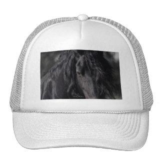 Friesian Image Trucker Hat