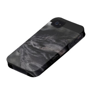 Friesian Intimacy iPhone 4/4S Case