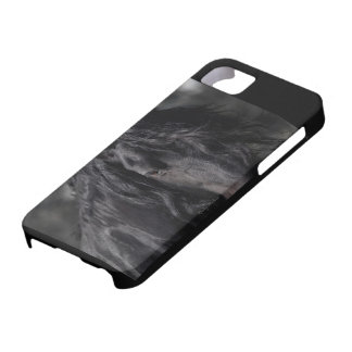 Friesian Intimacy iPhone 5 Covers