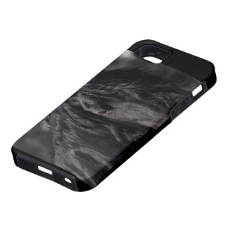 Friesian Intimacy iPhone 5 Cover