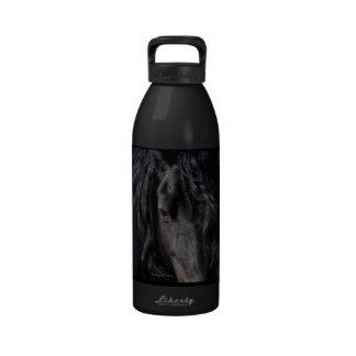 Friesian Intimacy Reusable Water Bottles