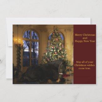 Friesian Mare Christmas Card