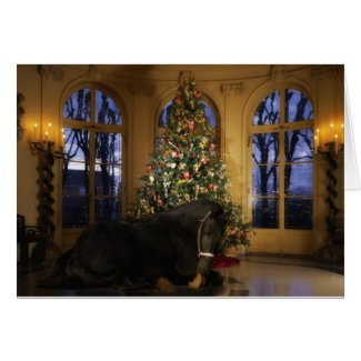 Friesian Mare Under the Tree