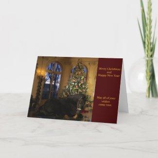 Friesian Mare Under Tree Christmas Card