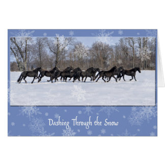Friesian Mares Holiday Card