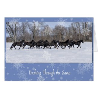 Friesian Mares Holiday Card