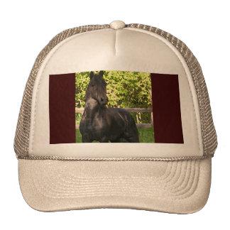 Friesian Painting Trucker Hat