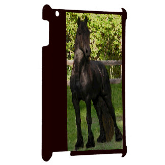 Friesian Painting Cover For The iPad