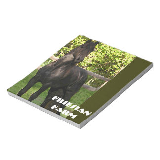 Friesian Painting Scratch Pads